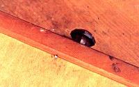 引き出しの裏側からも、底板を止めるために釘が打ってあるのがわかります。