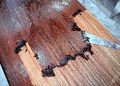 剥離材を塗布して塗膜を剥離。